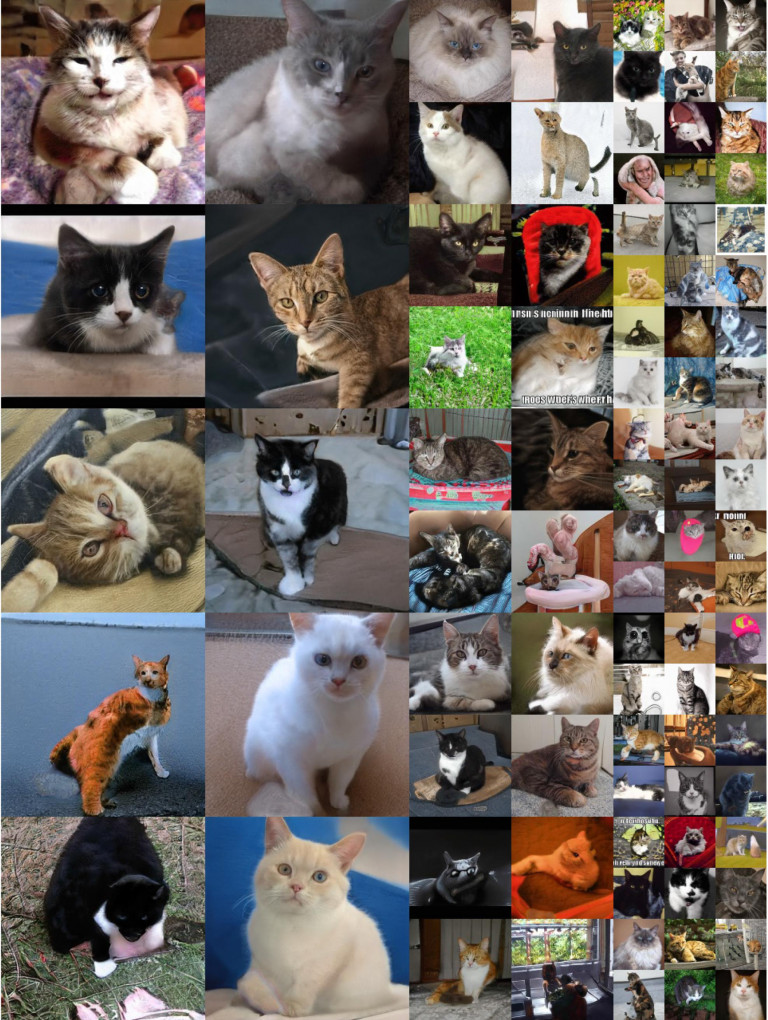 Série de représentations de chats produites par des réseaux antagonistes génératifs. Karras, Tero, Samuli Laine, et Timo Aila. 2018. « A Style-Based Generator Architecture for Generative Adversarial Networks ». arXiv:1812.04948 [cs, stat], décembre. http://arxiv.org/abs/1812.04948